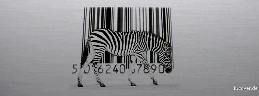Zebra scanner and - Zebra scanner and