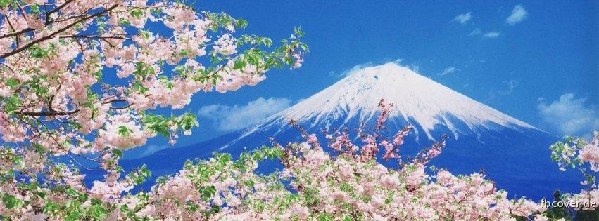 Summer & Mountains - Summer in white